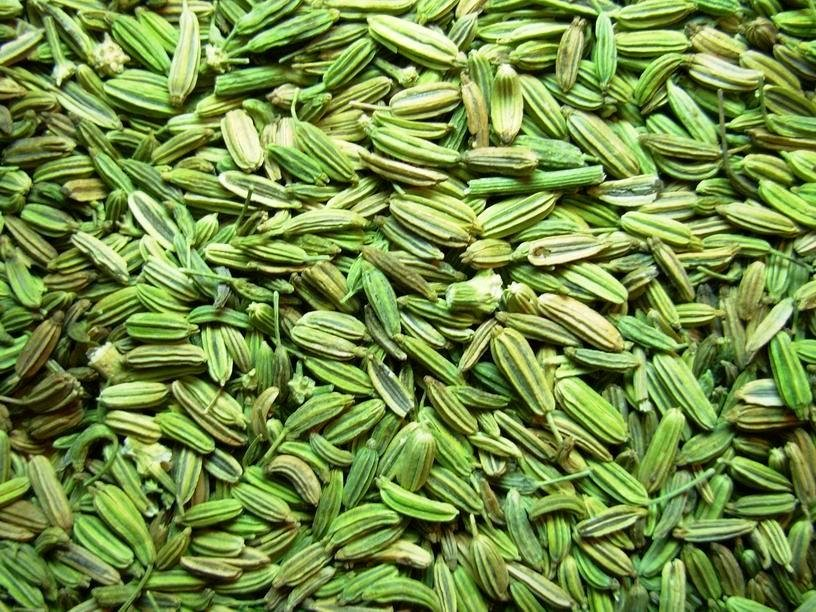 Fresh Natural & Organic best Quality Fennel Seeds ( Aniseeds )