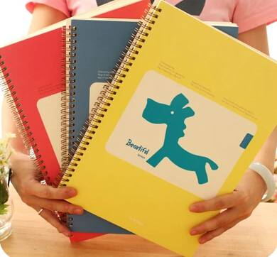 A4 Colorfull Sprial Notebook