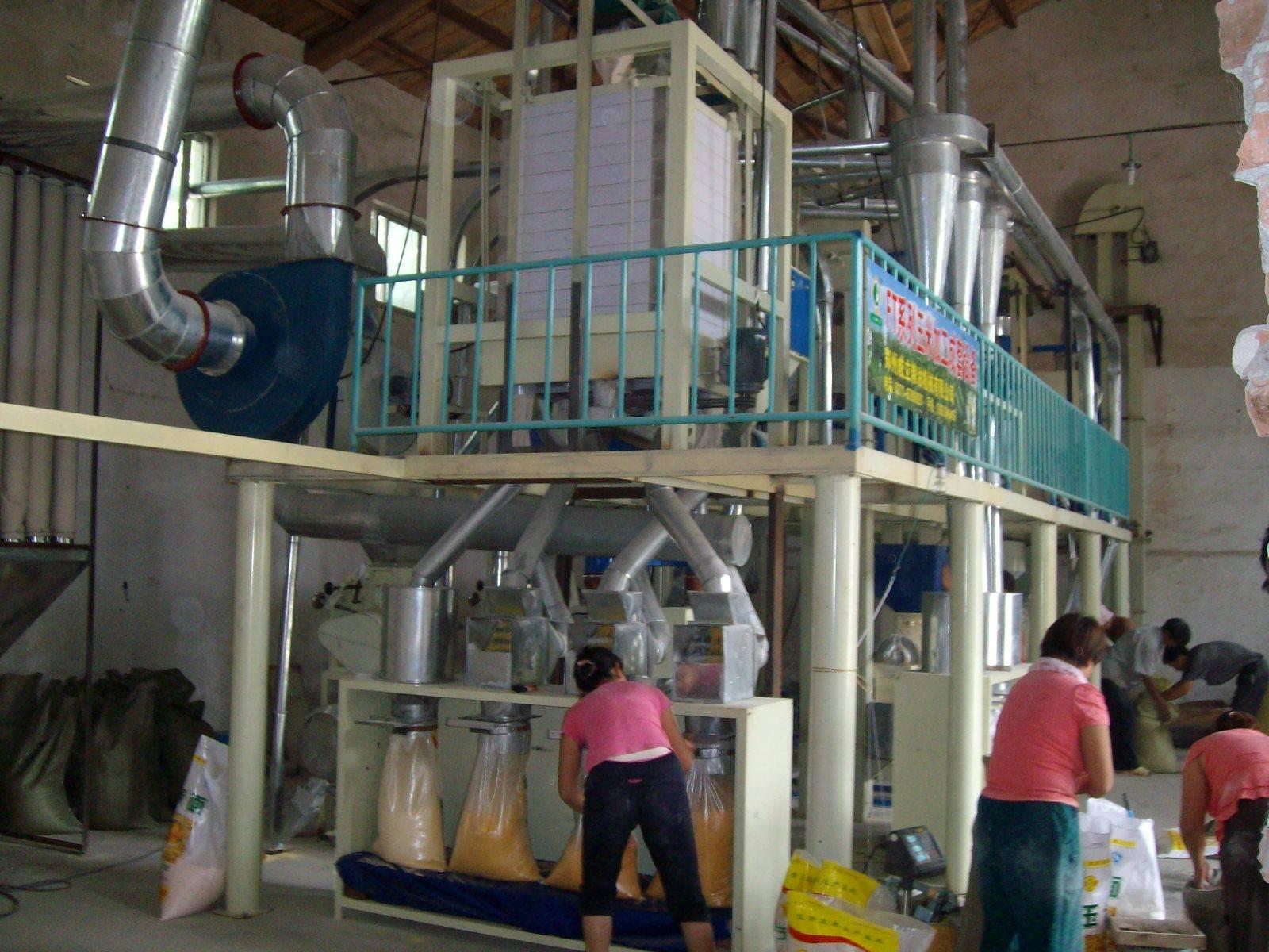 Maize Flour Mill, corn processing equipment