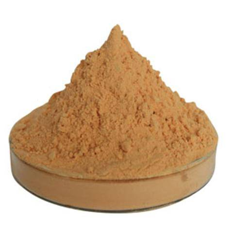 Hot Sale Goji Powder Goji Berry Extract