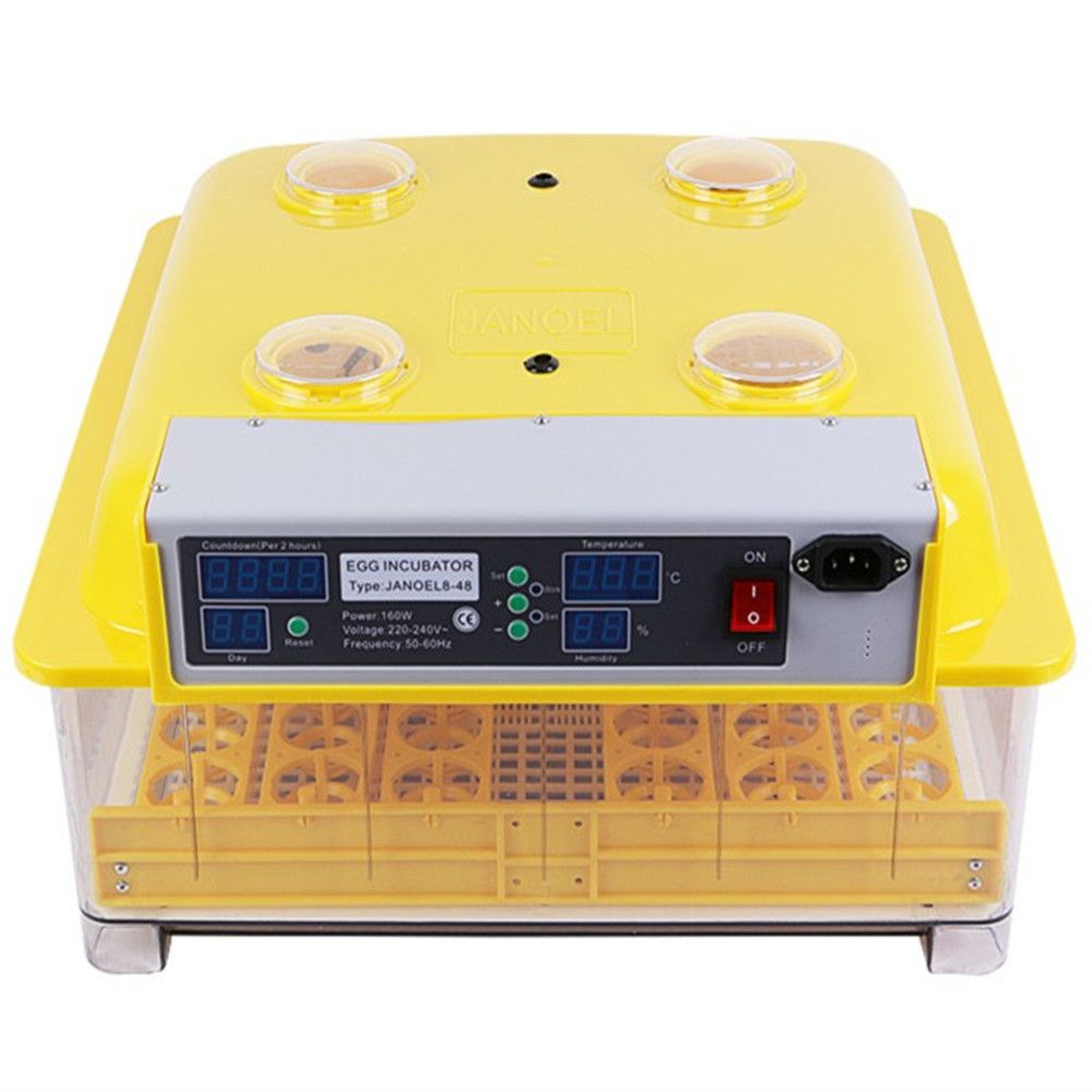 full automatic chick hatching chicken eggs for sale