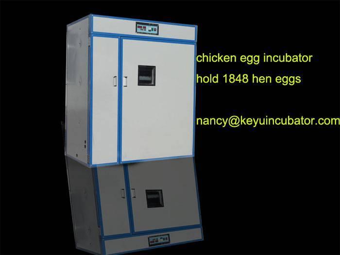 Meduim automatic chicken machine