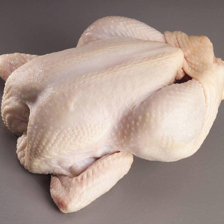 Clean Halal Chicken Feet / Frozen Chicken Paws Brazil / Fresh chicken wings and foot