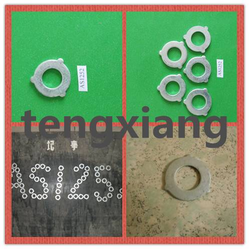 AS 1252 flat washer