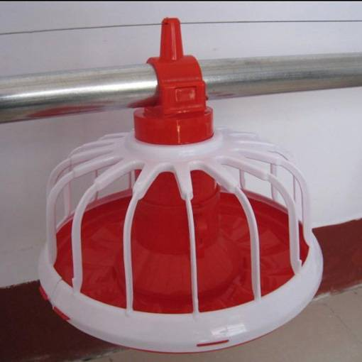 new type poultry feeder