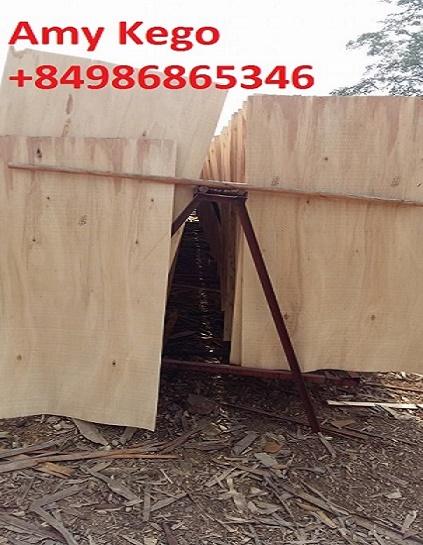 Eucalyptus Core Veneer thickness 2.0mm A grade to make plywood