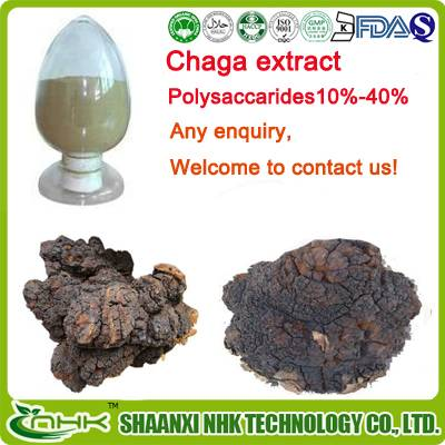 Factory price supply high quality natural chaga mushroom extract