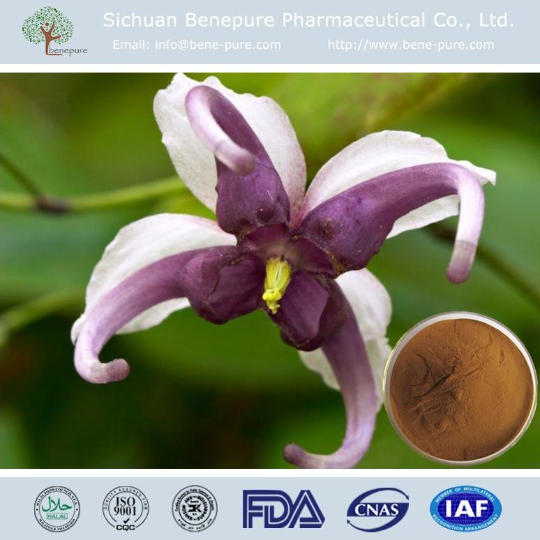 CAS 489-32-7, Icariin 10%-98% HPLC Epimedium Horny Goat Weed Extract,BENEPURE