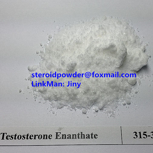 Testosterone Enanthate Primoteston Depot,315-37-7,206-253-5