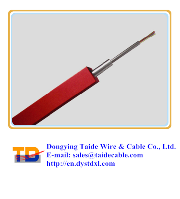 Tubing Encapsulated Cable