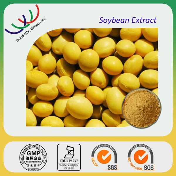GMP manufacturer supply free samples top quality soybean extract