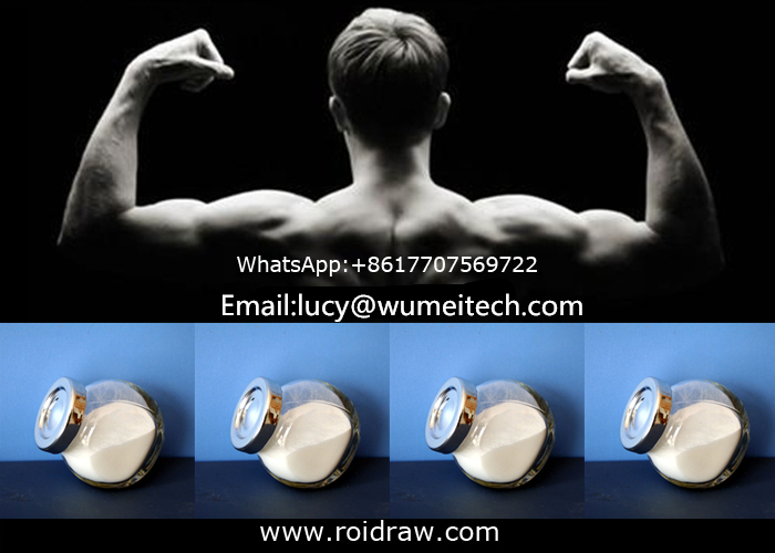 Pharmaceutical Chemical Steroid Hormone Powder Testosterone Enanthate for Fat Loss