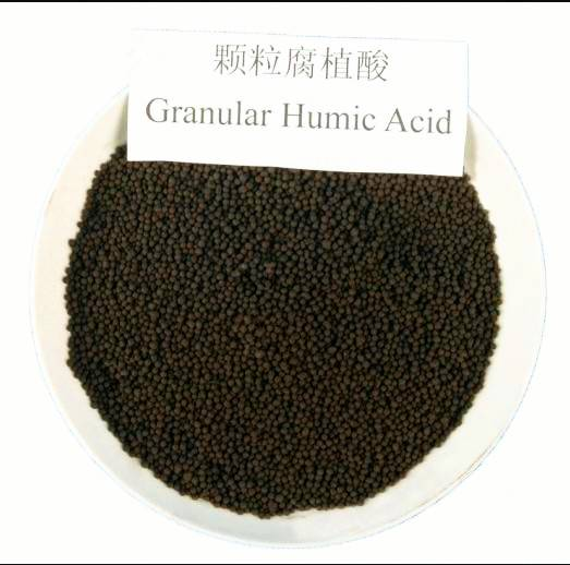 china Humic Acid granular from china 65% the organnic matter good quality best price