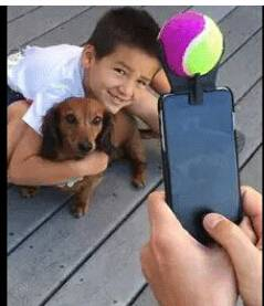 Selfie Stick Ball Smartphone Attachment For Pet Dog Train