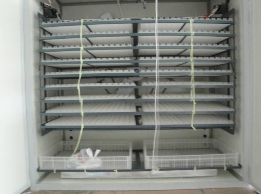 super automatic incubator