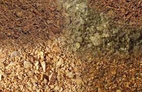 Animal feed, Cattle feed, Chicken feed