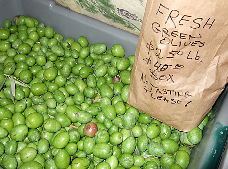 Fresh Olives For Sale