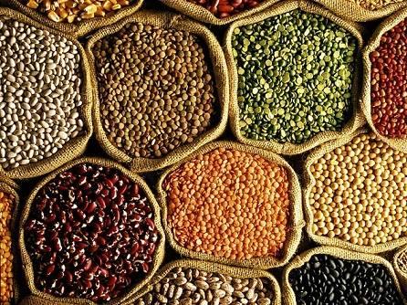 High Quality Lentiles/Red Lentiles/Green lentiles