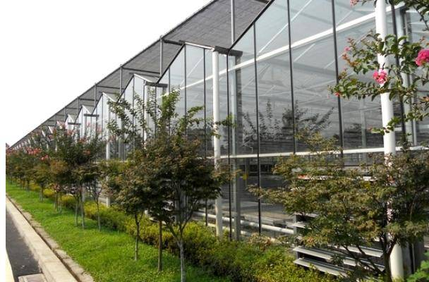 Glass Greenhouse (BZ-GG-1401)