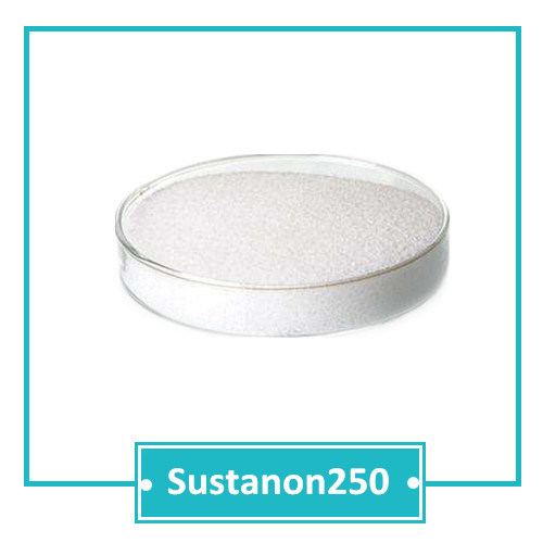 TESTO SERIES Sustanon 250 CAS 68924-89-0 98.85% purity above