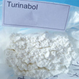 Top quality 4-Chlorotestosterone Acetate anabolic steroids raw powder