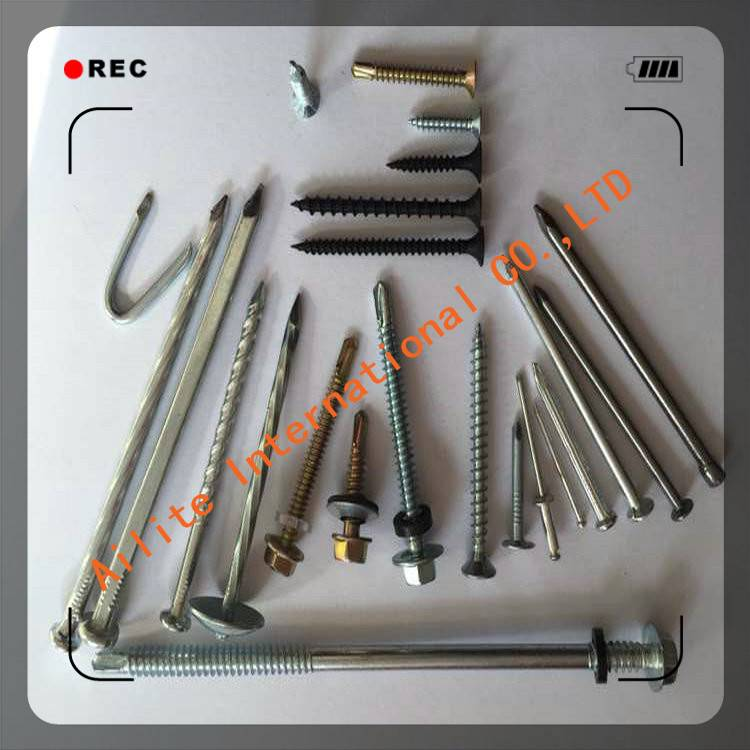 Bugle Head Fine Thread Self drywall drilling Screw