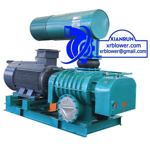 Xianrun Blower Roots Blower Vacuum Pumps