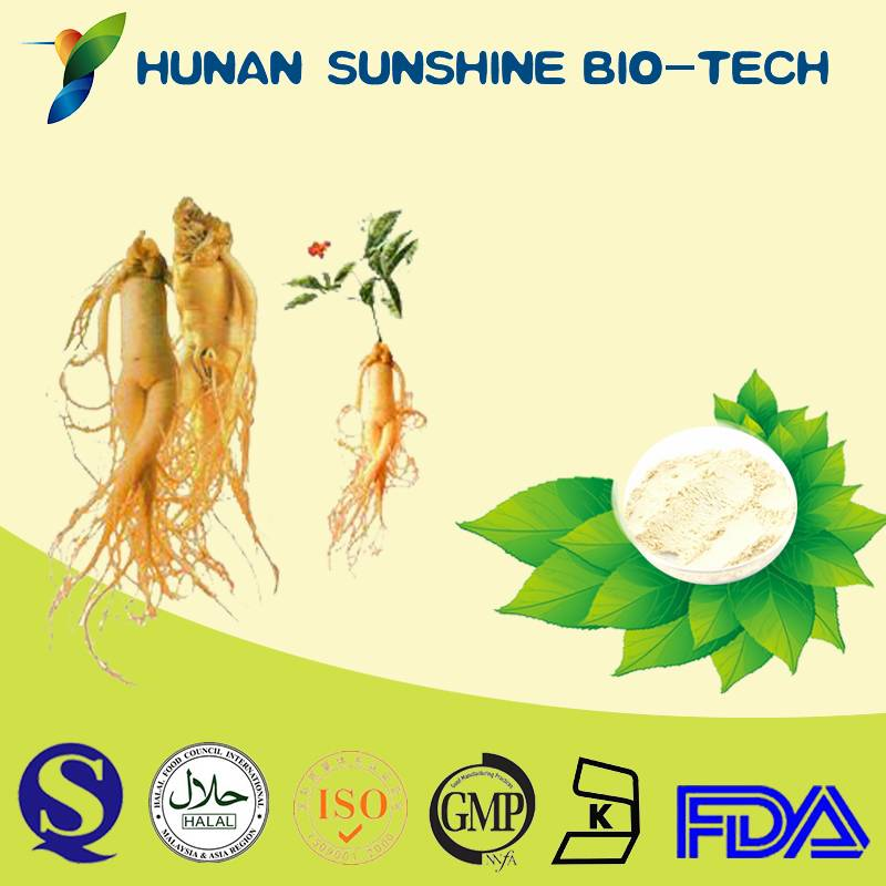 nutrition supplement & sex medicine no side effect Panax ginseng root extract ginsenoside/ginsing ex