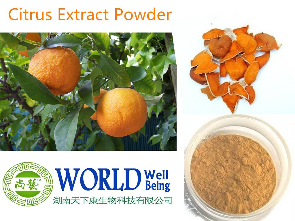 Citrus Aurantium Peel Extract, Orange Peel Extract Hesperidin Powder