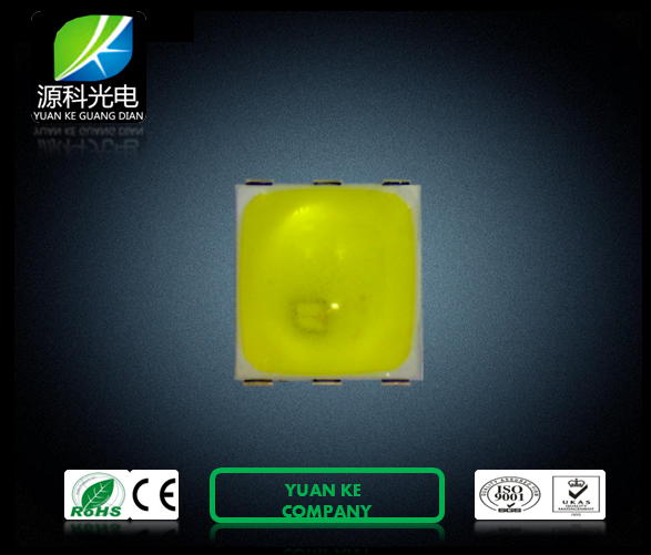 Special 2 Chip Series connection 1W SMD 5050 LED Ultraviolet lamp