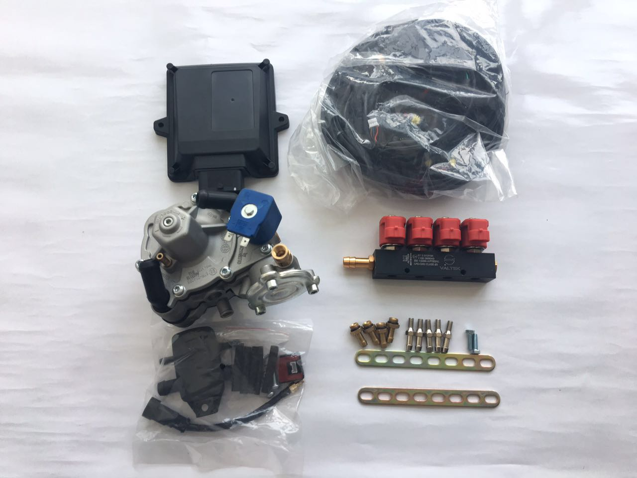 OBD electronic control mp48 cng lpg ecu sequential injection system