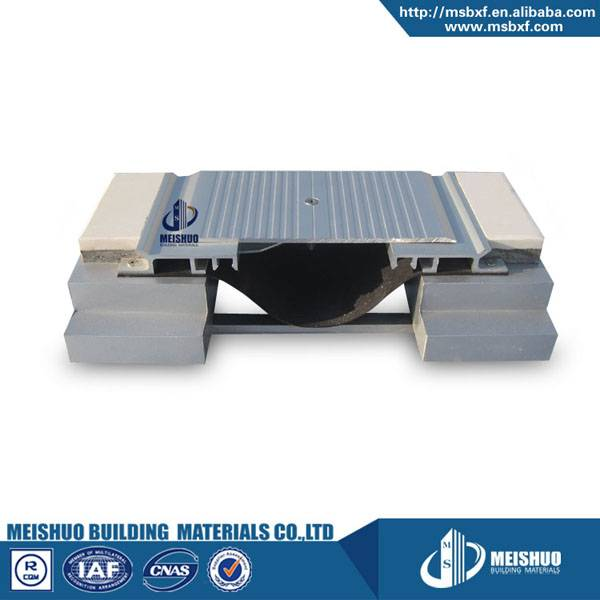 Horizontal floor aluminum expansion joint construction MSDGP