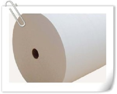 Spunlace Nonwoven Fabric in Rolls