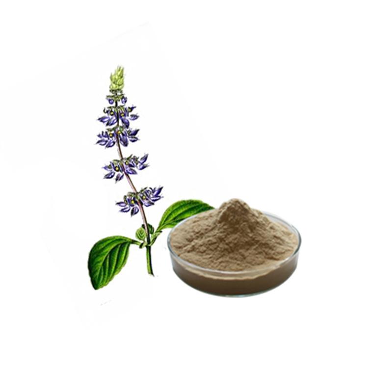 100% Natural Coleus Forskohlii Extract Forskolin For Weight Loss