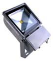 Good Price LED Floodlight