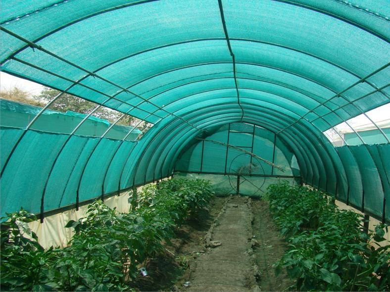 Shade Net for Agriculture Greenhouse