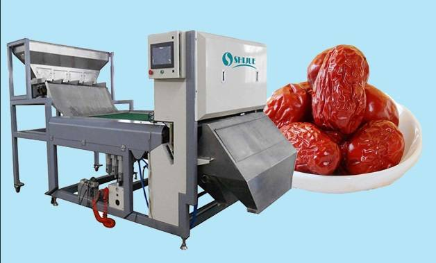 CCD Belt type for Jujube Color Sorter with high sorting accuracy