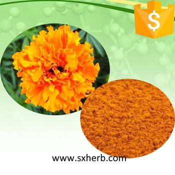 Hot sale marigold extract 20% Lutein Powder