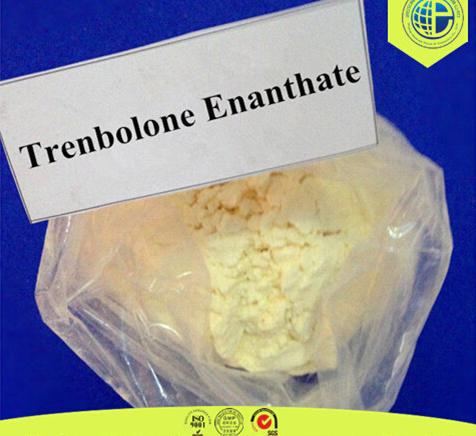 Effective Raw Steroid Hormone Powder Parabolan/Tren E/Trenbolone Enanthate