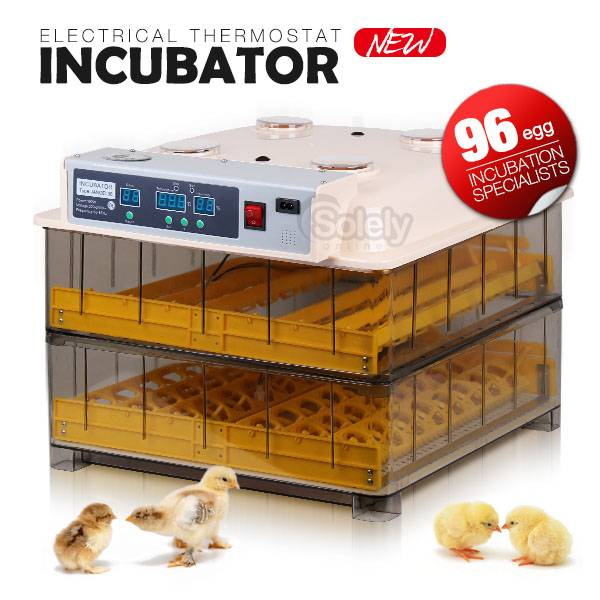 Automatic Incubator for Hatching Eggs Small Egg Incubator (KP-96)