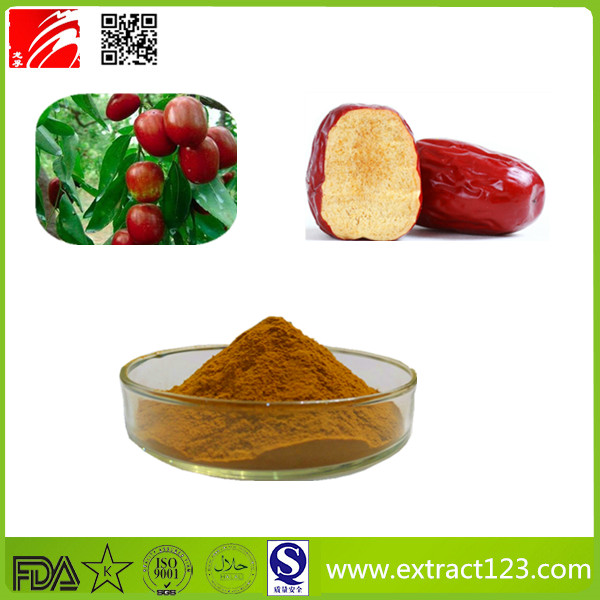 High Quality Jujube Extract Powder