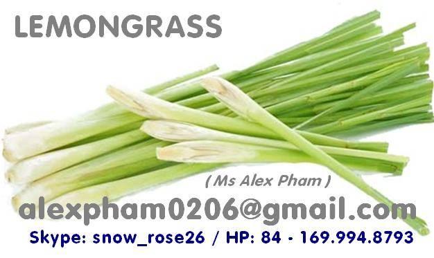 fresh lemongrass/ frozen lemongrass/ lemongrass powder/ lemongrass slices in SKYPE snow_rose26
