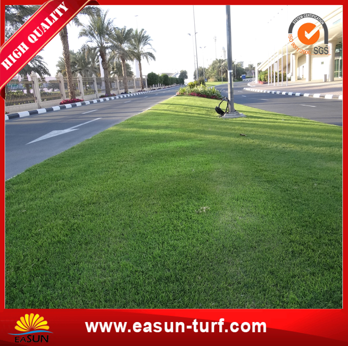 Artificial Grass Lawn Grass Synthetic Landscaping for Garden-MY