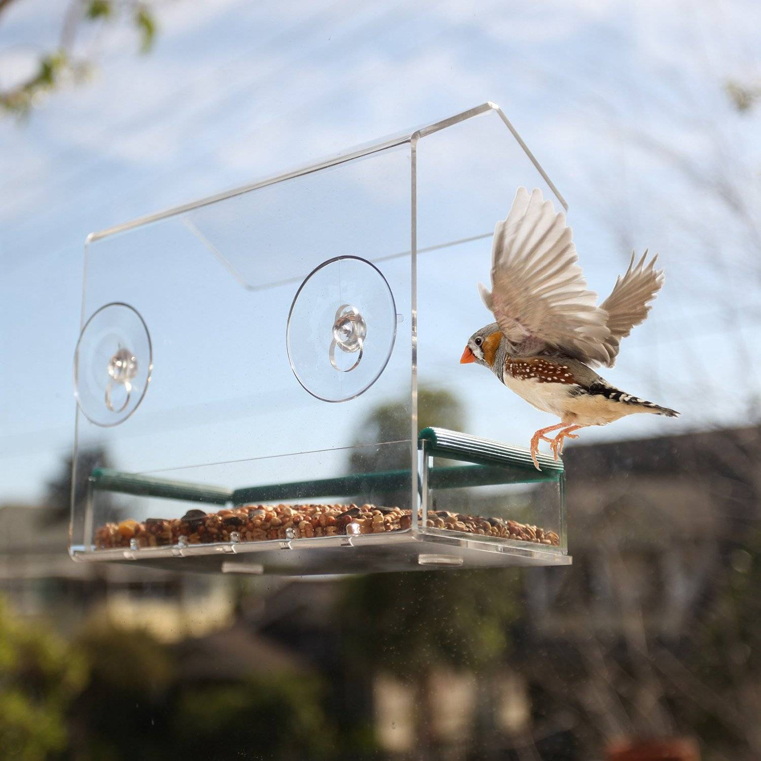 acrylic window bird feeder