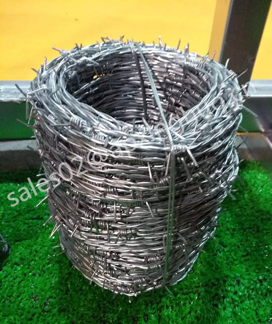 High quality galvanized barbed wire for fence