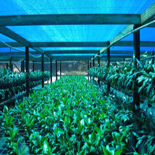 High quality greenhouse sun shade net