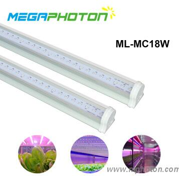 Intergrated T8 led grow tube light for multilayer cultivation or seedling