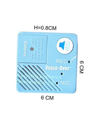 Memo Recordable/talking Module