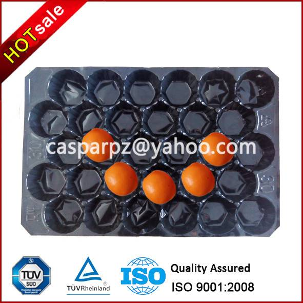 Plastic Packing Tray for Apple