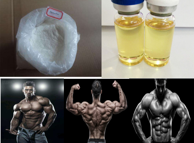 99.0% high purity Mestanolone powder for bodybuling steroid anabolic